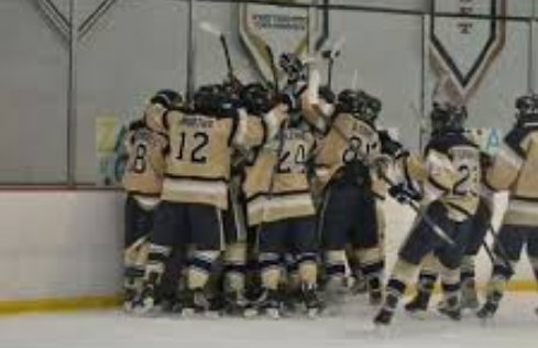 See You In Jamestown: Huge Night For Bethpage Hockey