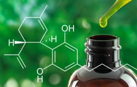 What's the Deal With Cannabinoids — The Eagle's Cry in-Depth Exclusive