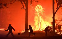 Rural Fire Service (RFS) volunteers and NSW Fire and Rescue officers fight a bushfire encroaching on properties near Termeil, Australia, December, 3, 2019. Picture taken December 3, 2019.  AAP Image/Dean Lewins/via REUTERS    ATTENTION EDITORS - THIS IMAGE WAS PROVIDED BY A THIRD PARTY. NO RESALES. NO ARCHIVE. AUSTRALIA OUT. NEW ZEALAND OUT.     TPX IMAGES OF THE DAY